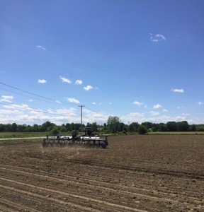 After Colin was finished planting Cameron Road, he headed off to the Scottsville field to begin the seeding process all over again. Thankfully we employ GPS on most of our equipment.